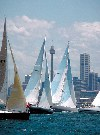 Australia - Sydney - NSW: Yachts position themselves for the start of the annual Sydney-Hobert race - photo by Rod Eime