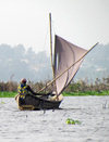 Lake Nokoué, Benin: fisherman in his sail boat - pirogue traditionnelle - photo by G.Frysinger