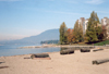 Canada / Kanada - Vancouver: Logs on the beach - English bay (photo by M.Torres)