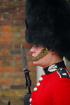 London: guard at St James palace - Sentry of the Scots Guards - photo by Miguel Torres