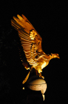 London: golden eagle - RAF memorial - Victoria Embankment, Westminster - photo by M.Torres