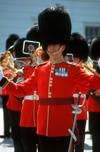 London, United Kingdom: The royal guards - band, Buckingham palace, London, United Kingdom - photo by B.Henry