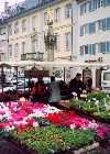 Germany / Deutschland / Allemagne -  Freiburg / QFB (Baden-Wurttemberg): at the market (photo by Miguel Torres)