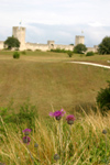 Gotland island - Visby: fields and town walls / f�lten och stad muren - photo by C.Schmidt