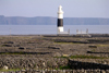 Ireland - Inisheer - Aran islands (Galway / Gaillimh county): lighthouse (photo by R.Wallace)
