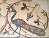 Mount Nebo - Madaba governorate - Jordan: peacock and grapevines - ornate Byzantine floor mosaics in the basilica - photo by M.Torres
