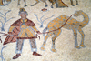 Mount Nebo - Madaba governorate - Jordan: Byzantine mosaic in the old diaconicon baptistry of the basilica - man with camel - photo by M.Torres