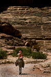 Jordan - Petra: riding till the amphitheatre - donkey - photo by J.Wreford