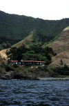 Juan Fernandez islands - Robinson Crusoe island: hosteria El Pangal (photo by Willem Schipper)