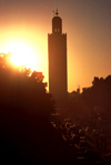 Morocco / Maroc - Marrakesh / Marrakech / Marraquexe: tower at sunset - medina - silhouete of minaret - Unesco world heritage site (photo by F.Rigaud)