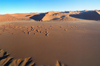Namibia: Dune landsape from Hot Air Balloon - Namib-Naukluft National Park, Sossusvlei, Hardap region - photo by B.Cain