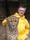 South Africa - Petting a Cheetah, big cats rehab ctr, Oudtshoorn - photo by B.Cain