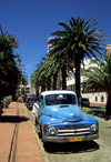 Punta del Este, Maldonado dept., Uruguay: an old pick-up truck on a palm tree lined street - photo by S.Dona'