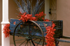 Santa Fé, New Mexico, USA: red chili peppers decorate an old cart - photo by C.Lovell
