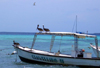 Los Roques, Venezuela: Isla Madrizqui - pelicans and boat - photo by R.Ziff