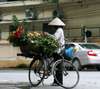 Hanoi - vietnam - flower vendor on a bike - photo by Tran Thai